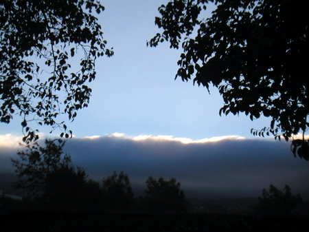 foghills.jpg