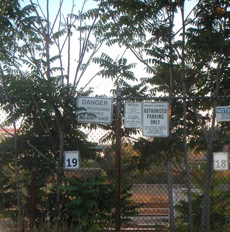 signs2.jpg
